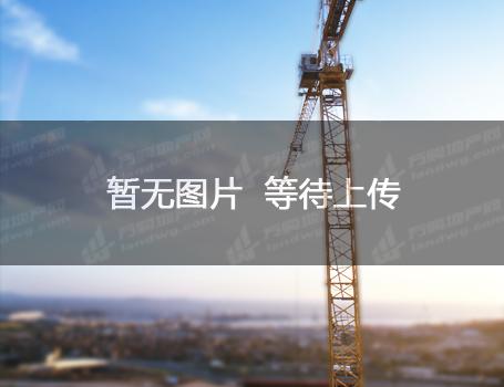 出售开发区大型厂房工业土地出售